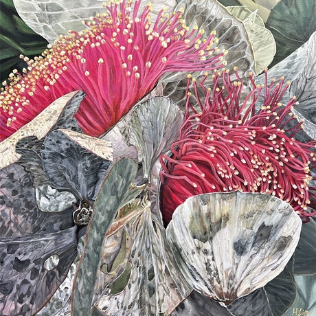 (CreativeWork) Toast Loves - Eucalyptus Macrocarpa- LIMITED EDITION GICLEE PRINT on stretched canvas ready to hang Ed. 1 of 100 by HSIN LIN. Print. Shop online at Bluethumb.