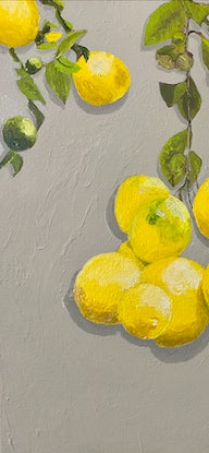 Hanging lemons in front of a limestone wall