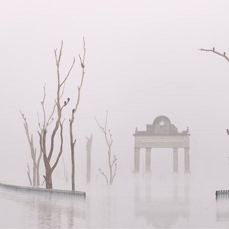 A stone park archway and cricket oval fence are emerging from a thick fog amongst dead trees in shallow water