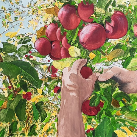 (CreativeWork) Apples by Paul Crowe. Oil. Shop online at Bluethumb.