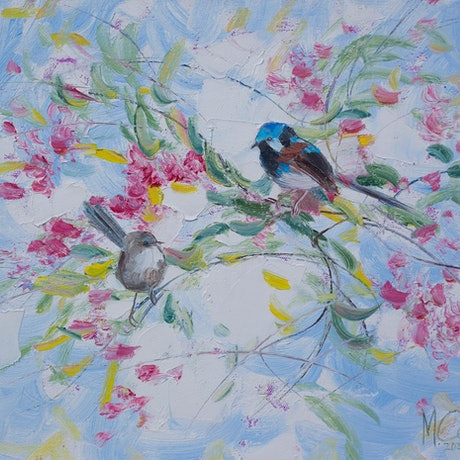 Fairy Wrens perched on the branches of native Australian flowers