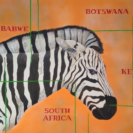 Zebra amongst African countries