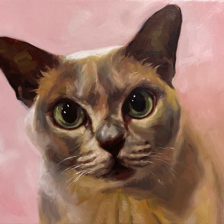 Oil painting expressing the intense stare of a cat, suggesting that she knows something we don't. This cat portrait is painted in a realistic style and comes framed, ready to hang.