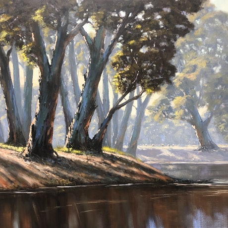 Sunlight on trees on a riverbank.