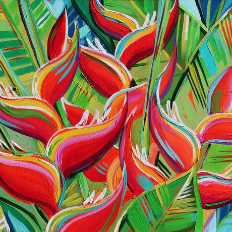 Abstract colourful heliconia flowers