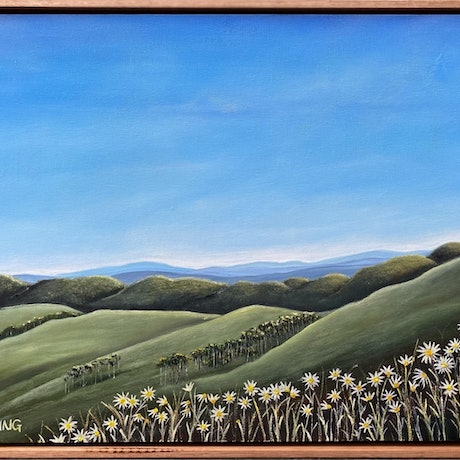 Country landscape with green rolling hills and white flannel flowers in the foreground.