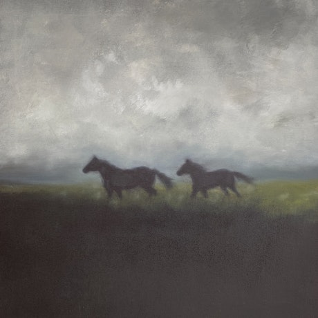 A silhouette of horses in a misty paddock