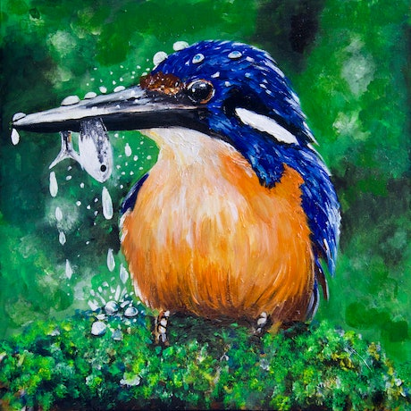 Kingfisher fishing in Lush Bush on a moss-covered rock