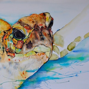 (CreativeWork) Salty Sea Dog by WANDA STAFFORD. watercolour. Shop online at Bluethumb.