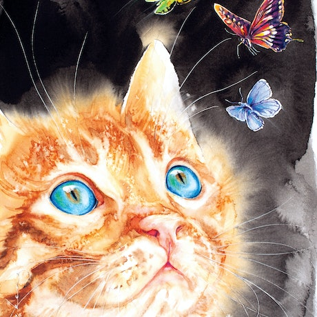 Cat with his winged butterflies.