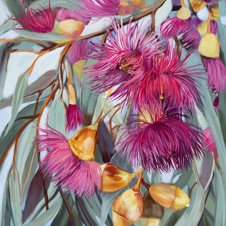 pink eucalyptus flowers with olive leaves