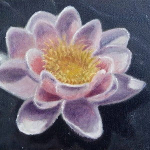 (CreativeWork) Water lily by Leon Lester. oil-painting. Shop online at Bluethumb.