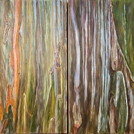 A vibrant uplifting earthy and textured oil mixed media abstract compiled composition of tree bark.  Sides of canvas painted medium brown.  Width based on size of both pieces together.