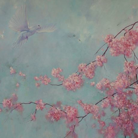 White dove flying above pink blossom