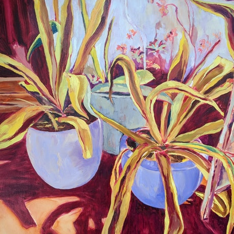 Oil painting of snake plant succulents in pots.