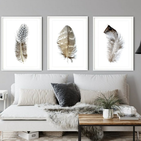 a set of 3 feather prints on a white background