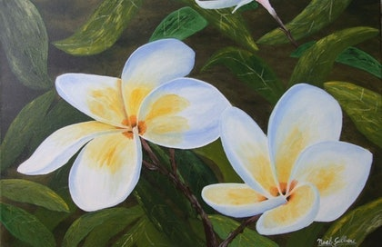 (CreativeWork) Frangipani #2 by Noel Gilbert. oil-painting. Shop online at Bluethumb.