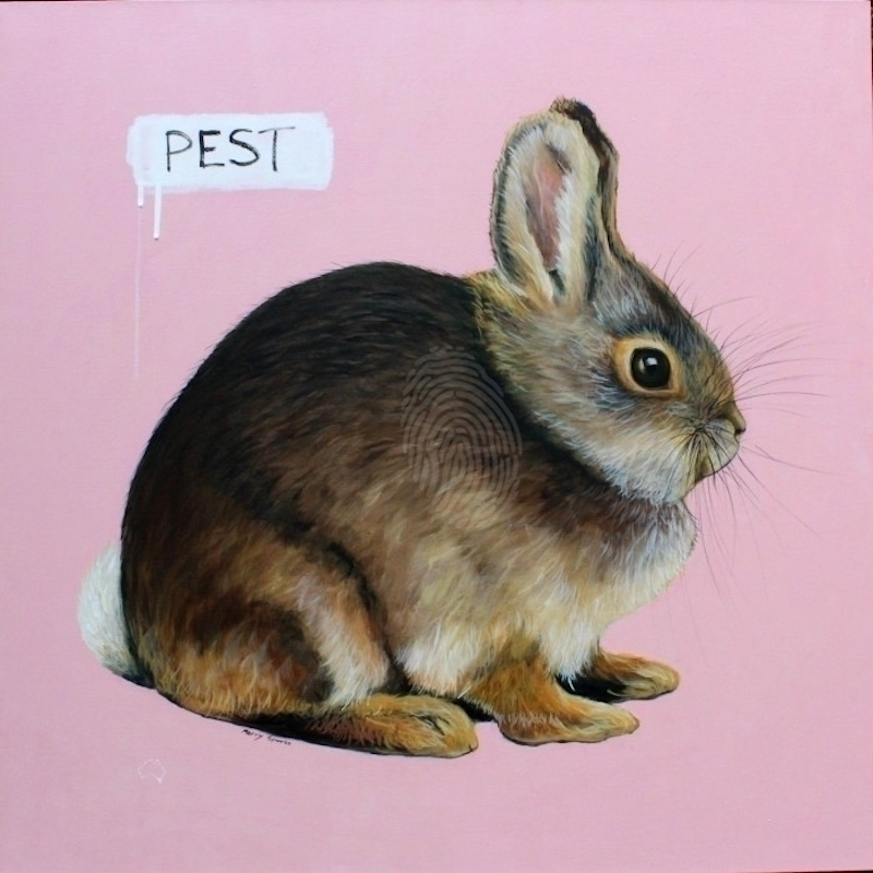 (CreativeWork) Lagomorpha-Leporidae-Bunny by Merry Sparks. Mixed Media. Shop online at Bluethumb.
