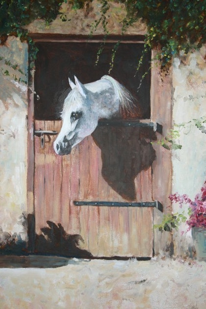 (CreativeWork) ARAB HORSE by Peter McKinney. arcylic-painting. Shop online at Bluethumb.