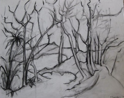 (CreativeWork) Drawing - Bush Scene by Coral Saunders. drawing. Shop online at Bluethumb.