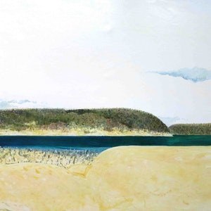 (CreativeWork) Inlet with cockatoo by John Graham. oil-painting. Shop online at Bluethumb.