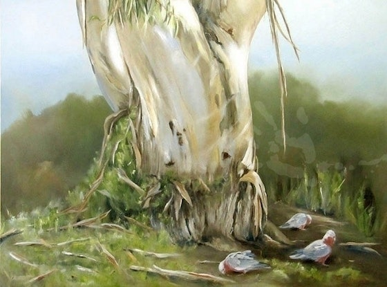 (CreativeWork) Big Old Shady Gum Tree by Jacqui Cleijne. Oil Paint. Shop online at Bluethumb.