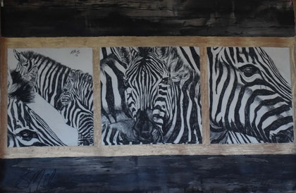 (CreativeWork) Zebras by Stephanie Miles. drawing. Shop online at Bluethumb.