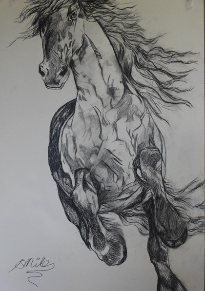 (CreativeWork) Horse Running by Stephanie Miles. drawing. Shop online at Bluethumb.