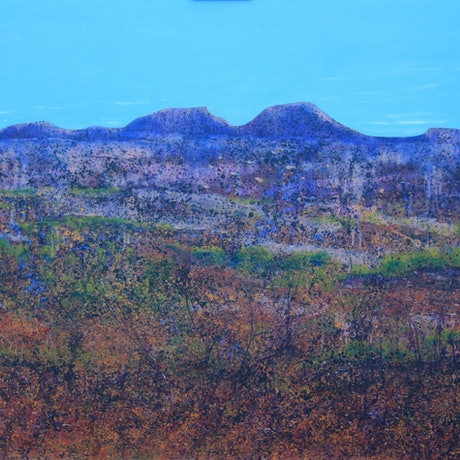 (CreativeWork) Baron Land by Garrie Clark. Acrylic Paint. Shop online at Bluethumb.