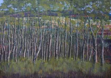 (CreativeWork) Tree Study by Garrie Clark. arcylic-painting. Shop online at Bluethumb.