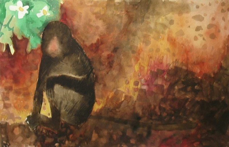 (CreativeWork) Monkey (2010) by John Graham. watercolour. Shop online at Bluethumb.