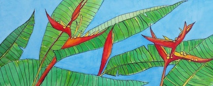 (CreativeWork) More Heliconias by Ann Owen. watercolour. Shop online at Bluethumb.