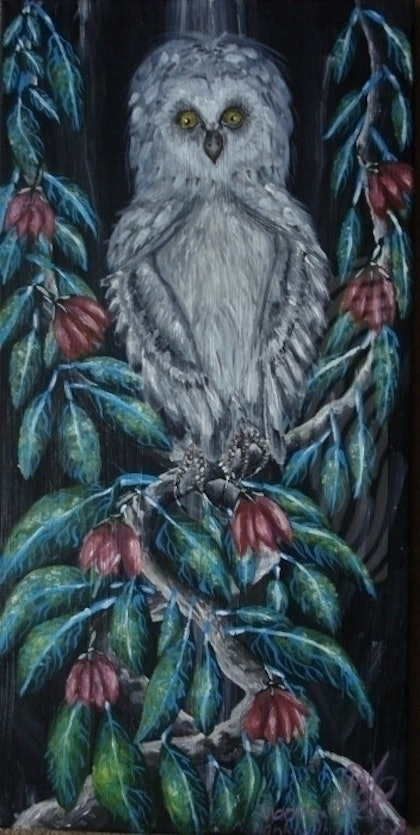 (CreativeWork) Owl of wisdom by maryann nankivell. arcylic-painting. Shop online at Bluethumb.
