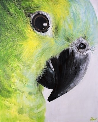 (CreativeWork) Sticky Beak Vs2 - Ltd Edition Print by Emma Ward. Acrylic Paint. Shop online at Bluethumb.