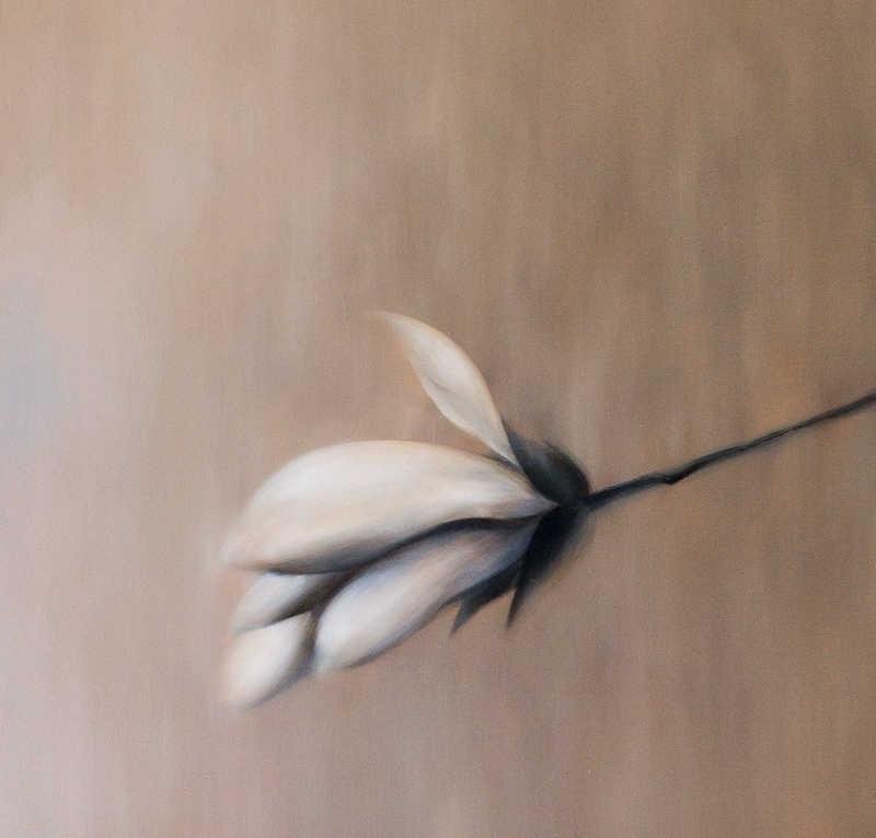 (CreativeWork) Magnolia Therapy #6 by Haruyo Morita. Oil Paint. Shop online at Bluethumb.