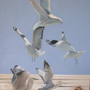(CreativeWork) Graceful Scavengers by Beryl Stutchbury. oil-painting. Shop online at Bluethumb.
