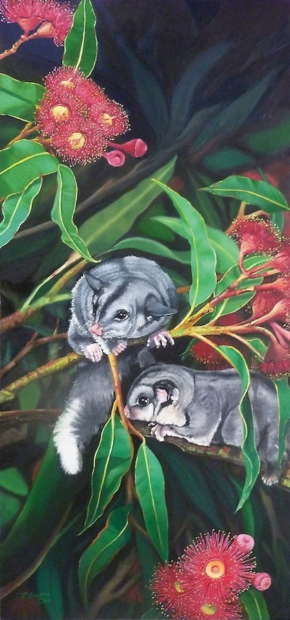 (CreativeWork) Possums by Katherine Close. oil-painting. Shop online at Bluethumb.