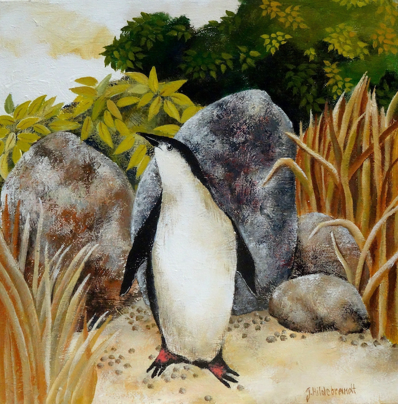(CreativeWork) FAIRY PENGUIN by Johanna Hildebrandt. #<Filter:0x00007f1f96932c10>. Shop online at Bluethumb.