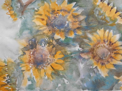 (CreativeWork) Sun Flower Study by Valda Cuming. watercolour. Shop online at Bluethumb.