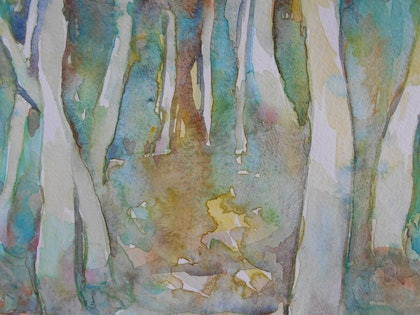 (CreativeWork) Tree Study Wilpena Pound. by Valda Cuming. watercolour. Shop online at Bluethumb.