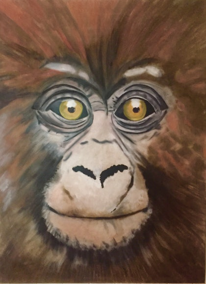 (CreativeWork) Baby Chimp by Danielle Bachinger. oil-painting. Shop online at Bluethumb.