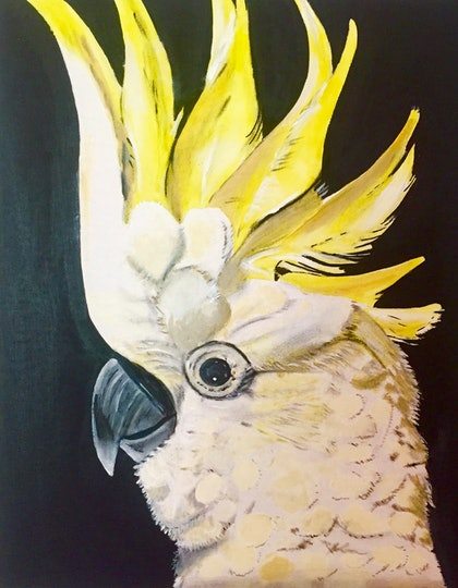 (CreativeWork) Yellow Cockatoo by Danielle Bachinger. watercolour. Shop online at Bluethumb.