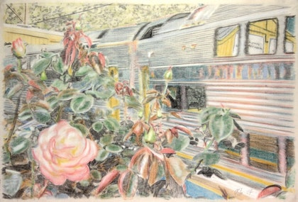 (CreativeWork) Train and rose bush at Woodford Station by Peter Brandt. drawing. Shop online at Bluethumb.