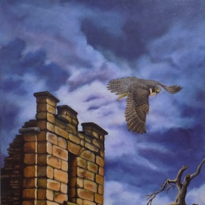 (CreativeWork) Perigrine Falcon 2010 by Pete Westerhoff. arcylic-painting. Shop online at Bluethumb.