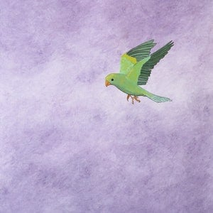 (CreativeWork) The Parrot by Barry Johnson. arcylic-painting. Shop online at Bluethumb.