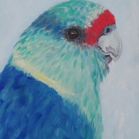 (CreativeWork) Mallee Parrot - Australian ring neck parrot by Naomi Veitch. Oil Paint. Shop online at Bluethumb.