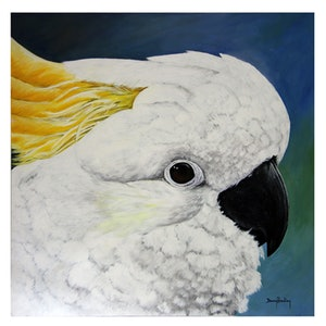 (CreativeWork) Cheeky Cocky by Danny Bradley. arcylic-painting. Shop online at Bluethumb.