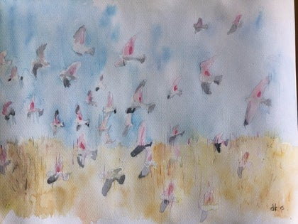 (CreativeWork) A flurry of galahs by Dids Kimpton. watercolour. Shop online at Bluethumb.