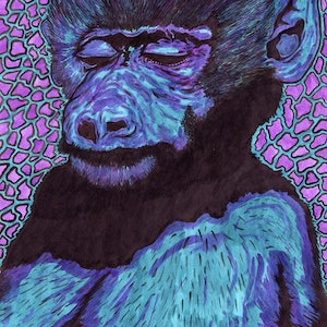 (CreativeWork) Even Monkeys Get The Blues by Jolon Larter. other-media. Shop online at Bluethumb.