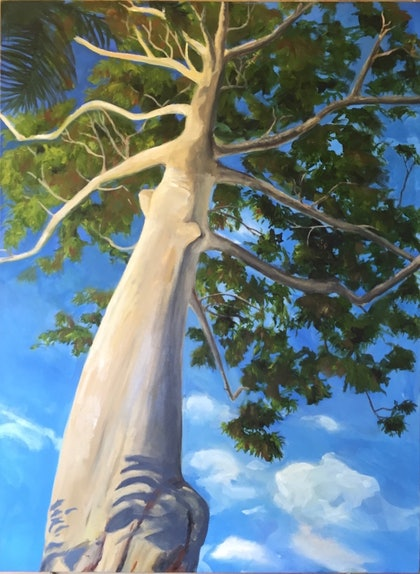 (CreativeWork) Gum Tree - The Gap by Luella Price. oil-painting. Shop online at Bluethumb.